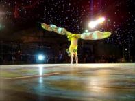 Acrobatic Stilts